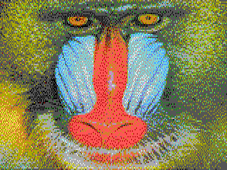 rgbx-Baboon-320x120.png